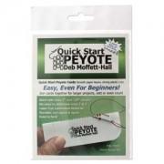 Quick Start Peyote Grösse 8er Perlen 3er Pack