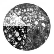 Swarovski Elements Rivolis 14mm Crystal Black Patina F 6 Stück