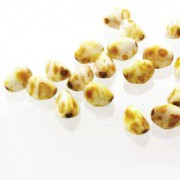 Pinch Beads 5x3mm White Picasso 50 Stück